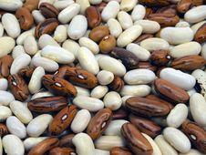 Free Kidney Beans Stock Image - 18395111