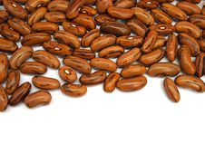 Free Kidney Beans Royalty Free Stock Photos - 18395158