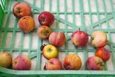 Free Apples Royalty Free Stock Photography - 18397407