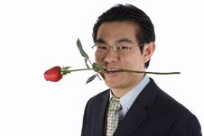 Holding Rose In Mouth Stock Photography