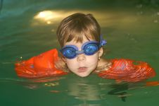 Learning To Swim Royalty Free Stock Photo