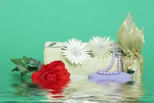 Free Spa Items - Water Effect Royalty Free Stock Photos - 1843618
