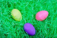 Free Eggs In The Grass Stock Photography - 1845602