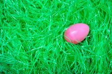 Free Egg In The Grass Royalty Free Stock Images - 1845609