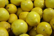 Lemons From The Local Market Stock Photography