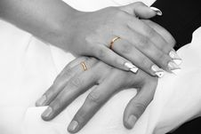 Free Rings Stock Photography - 1849132