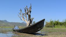 Free Scenery Of Old Boat And Dead Tree Royalty Free Stock Images - 18400869
