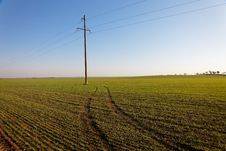 Free Power Line In Green Field Royalty Free Stock Photography - 18401397