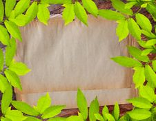 Free Vintage Paper On Green Leave Frame Royalty Free Stock Photos - 18402658
