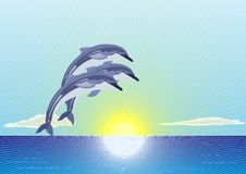 Free Dolphins Royalty Free Stock Images - 18403449