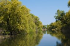 Danube Delta Channel Stock Image