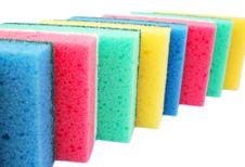 Free Sponges Stock Photography - 18404322