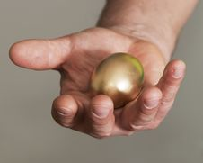 Free Golden Egg Stock Photography - 18405272