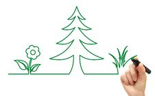 Hand Drawing Tree And Flower Icon Stock Image