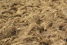 Free Plowed Field Stock Photo - 18407120