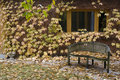 Free A Lonelly Bench At Autumn With Colourful Leaves In Stock Photography - 18415102