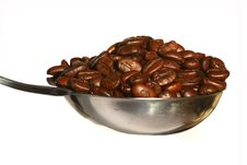 Free Coffee Beans Royalty Free Stock Photos - 18413758