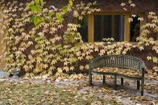 A Lonelly Bench At Autumn With Colourful Leaves In Stock Photography