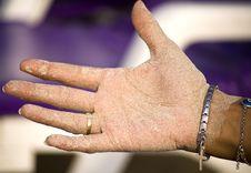 Free Sandy Hand Stock Image - 18416681