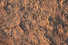 Dry Cracked Dirt Surface