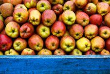Free Apples Stock Photo - 18417370