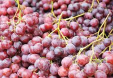 Free Grapes Royalty Free Stock Image - 18420076