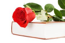 Free Beautiful Red Rose On The Book Royalty Free Stock Photography - 18421887