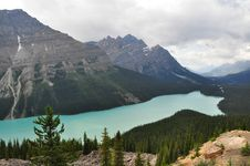 Free Peyto Lake Stock Image - 18423621