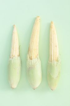 Free Baby Corn Stock Images - 18423824