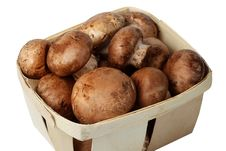 Free Field Mushrooms Royalty Free Stock Image - 18424696