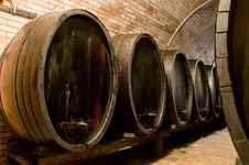 Free Huge Barrels For Storing Wine Stock Photos - 18426833