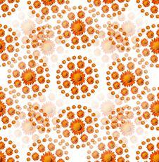 Free Orange Flower Pattern Royalty Free Stock Image - 18427726