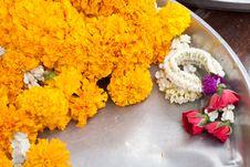 Free Garland Flower Royalty Free Stock Photos - 18428468