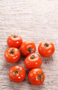 Free Tomato On A Old Fabric Royalty Free Stock Photos - 18428688