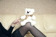 Free Bear On A Knee Royalty Free Stock Image - 18429166