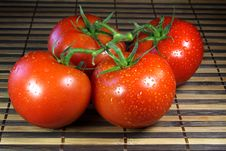 Free Tomatoes Stock Photo - 18432920