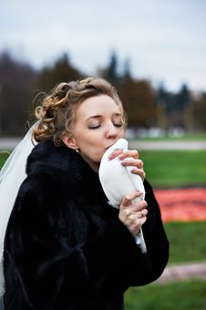 Free Beauty Bride Kiss White Pigeon Royalty Free Stock Image - 18434146