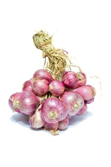 Free Onion Stock Images - 18434974