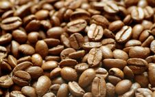 Free Coffee Beans Royalty Free Stock Photos - 18436798