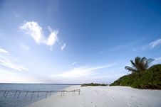 Free White Sand Beach And Blue Blue Sky Royalty Free Stock Images - 18439459