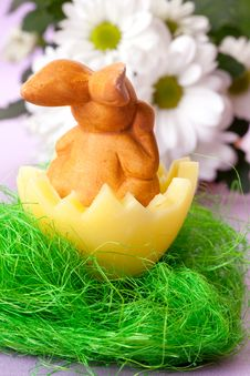 Free Easter Bunny In A Basket Royalty Free Stock Image - 18442326