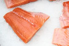 Free The Cooled Fish Stock Image - 18446641