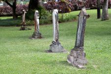 Free Old Tombstones In A Cemetery Royalty Free Stock Photo - 18448445