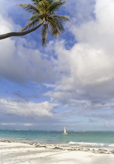 The  Small Sailing Boat Near Caribbean Beach Royalty Free Stock Images