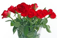 Free Bouquet Of Red Roses In Vase Royalty Free Stock Images - 18449279