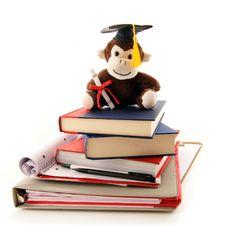Free Monkey Grad Stock Images - 18454144