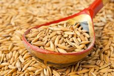 Hohloma Spoon With Oats Seeds Royalty Free Stock Photo