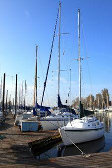 Free A Marina Environment. Stock Images - 18455604