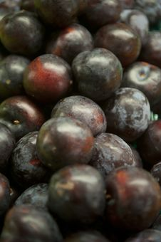 Free Fresh Plums Stock Images - 18456644