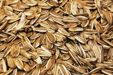 Free Close Up Of Punpkin Seeds Stock Photo - 18457510